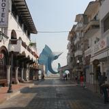The sailfish from Avenida mexico