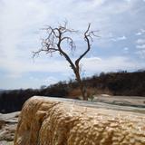 manantial de hierve el agua 6