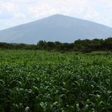 La Gavia. Cerro El Culiacán