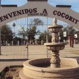 Bienvenidos a Cocorit