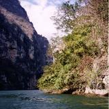 Río Grijalva a su paso por el cañón del sumidero. 2002