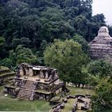 Templo XIV y al fondo el templo de las Inscripciones. Palenque.2002