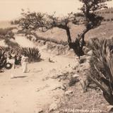 Camino a Toluca