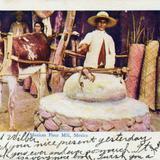 Molino de harina