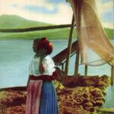 No. 44: Esposa Tarasqueña