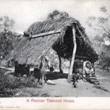 Casa con techo de palma