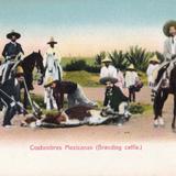 Costumbres Mexicanas (marcando del ganado)