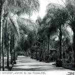 Parque Venustiano Carranza