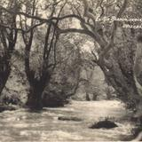 El Río Blanco, cerca de Santa Rosa