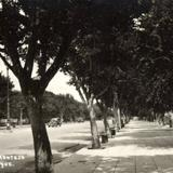 Paseo Montejo