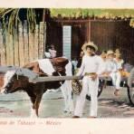 Una carreta en Tabasco
