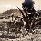 Niños con burro y Volcán Iztaccíhuatl