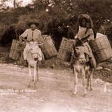 Motivo Típico de Oaxaca
