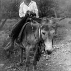 Niño con burro
