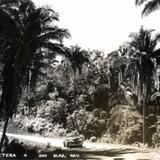 Carretera a San Blas