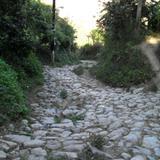 Antiguo camino a Necoxtla