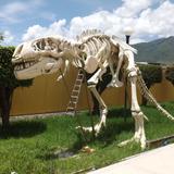 """Museo """"La Avispa"""" Chilpancingo, Guerrero. Julio/2013"""