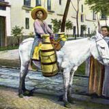 Lechero mexicano