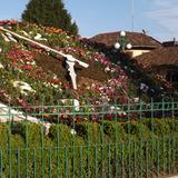 Reloj floral en Zacatlán. Mayo/2014
