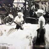Embarque del Henequen Hacia 1945