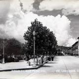 Jardin y calle principal