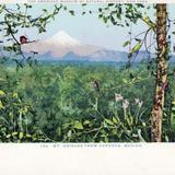 El Pico de Orizaba, desde Córdoba