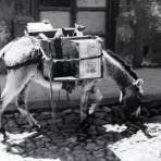 ESCENA TIPICAUNA CALLE Hacia 1945