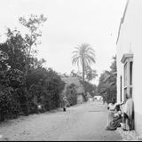 Calle en Cuautla (por William Henry Jackson, c. 1888)