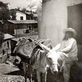 Arriero en Taxco