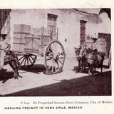 Transporte de carga en Veracruz