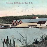 Carnonera en el puerto de Pichilingue