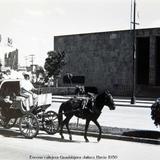 Escena callejera Guadalajara Jalisco