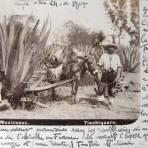 TIPOS MEXICANOS Tlachiquro por el fotografo ABEL BRIQUETE 1900