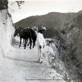 Tipos mexicanos Arriero de los caminos de Guanajuato