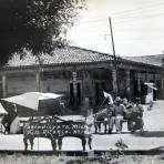 ESCENA COTIDIANA La Plaza