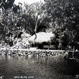 LA TOBARA Circa 1930-1950