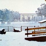 Parque Guadiana en la nevada de enero de 1987