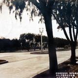 Avenida Alvaro Obregon alla por 1930-1950