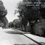 Avenida porfirio Diaz
