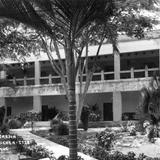 Hotel y jardín