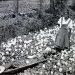 TIPOS MEXICANOS Xochimilco una vendedora de Flores