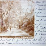 El Bosque de Chapultepec ( Fechada en Agosto de 1902 )