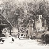 Pozo en una casa de campo