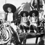 Turistas con burro cebra y carreta