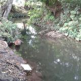 rio en tolome ¡