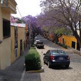 Calles del Centro Histórico de Tlaxcala en Primavera. Abril/2017