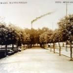 Parque del Mazo
