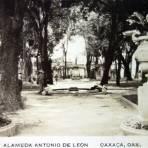 La Alameda Antonio de leon ( Fechada 30 de Marzo de 1934 ).