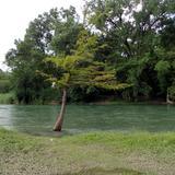Río Guayalejo, Ej. Benito Juárez