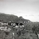 Alrededores de Teziutlán